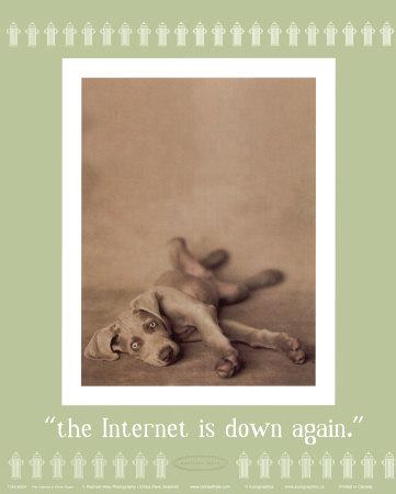 doginternetdown.jpg